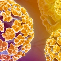 Oslabená imunita a HPV