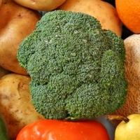Zdravie v zelenine